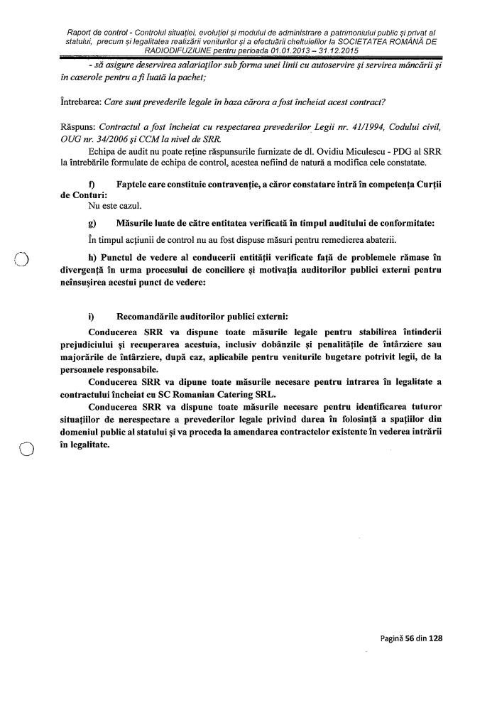 Raport Curtea Conturi p II17