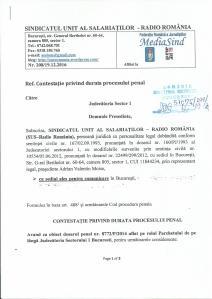 plangere-tergiversare-dosar-penal-nr-8772-p-2014
